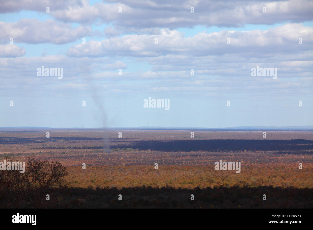 tornado over savanna, South Africa, Kruger National Park, Babalala, Punda Maria - Stock Image