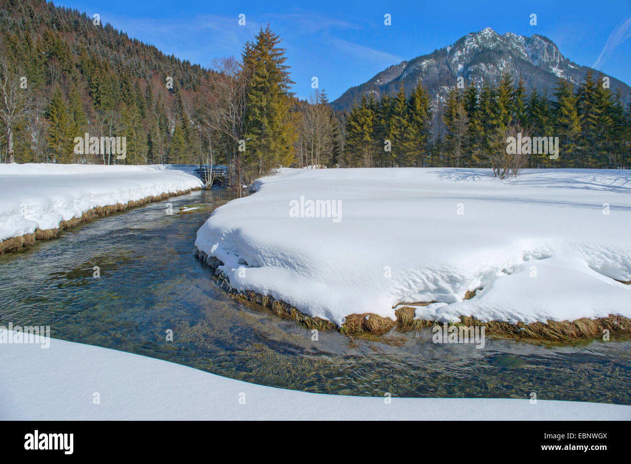 creek in wintry scenery near Ammer sources, with Laber and Ammergauer Alps, Germany, Bavaria, Oberbayern, Upper - Stock Image