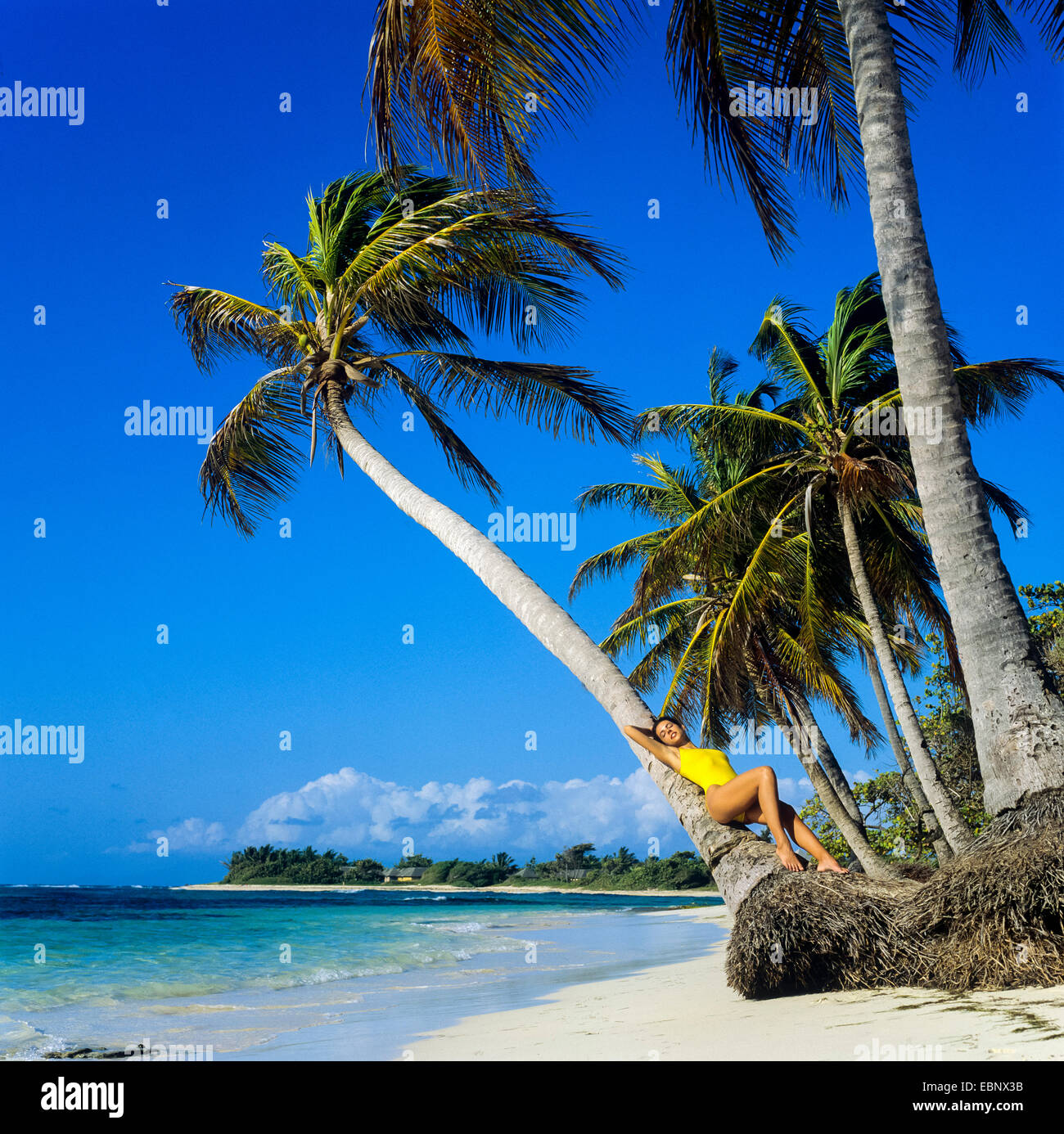 Guadeloupe Beach: Young Woman Lying On Palm Tree On Caribbean Beach