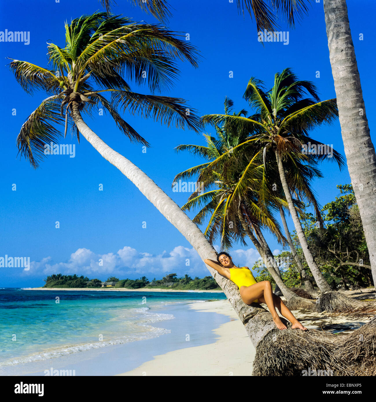 Guadeloupe Beach: Young Woman Laying On Palm Tree On Caribbean Beach