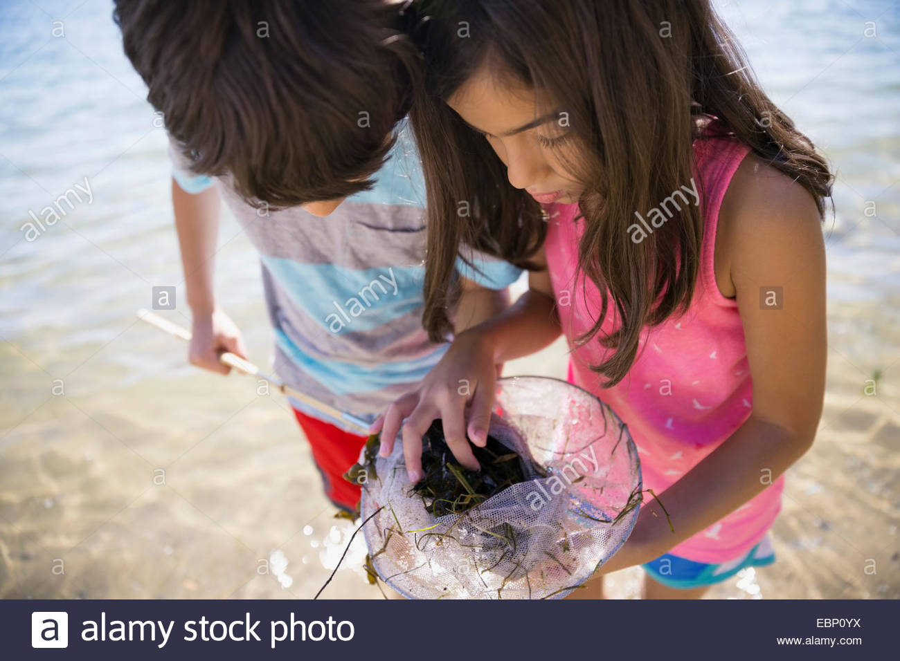 Boy and girl clam digging on beach - Stock Image