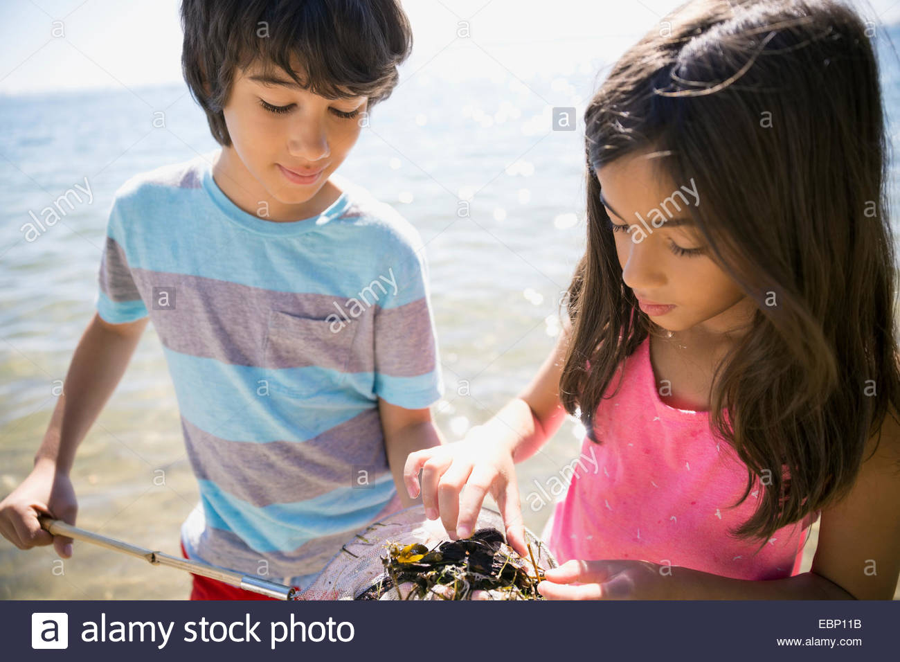Boy and girl clam digging on beach Stock Photo
