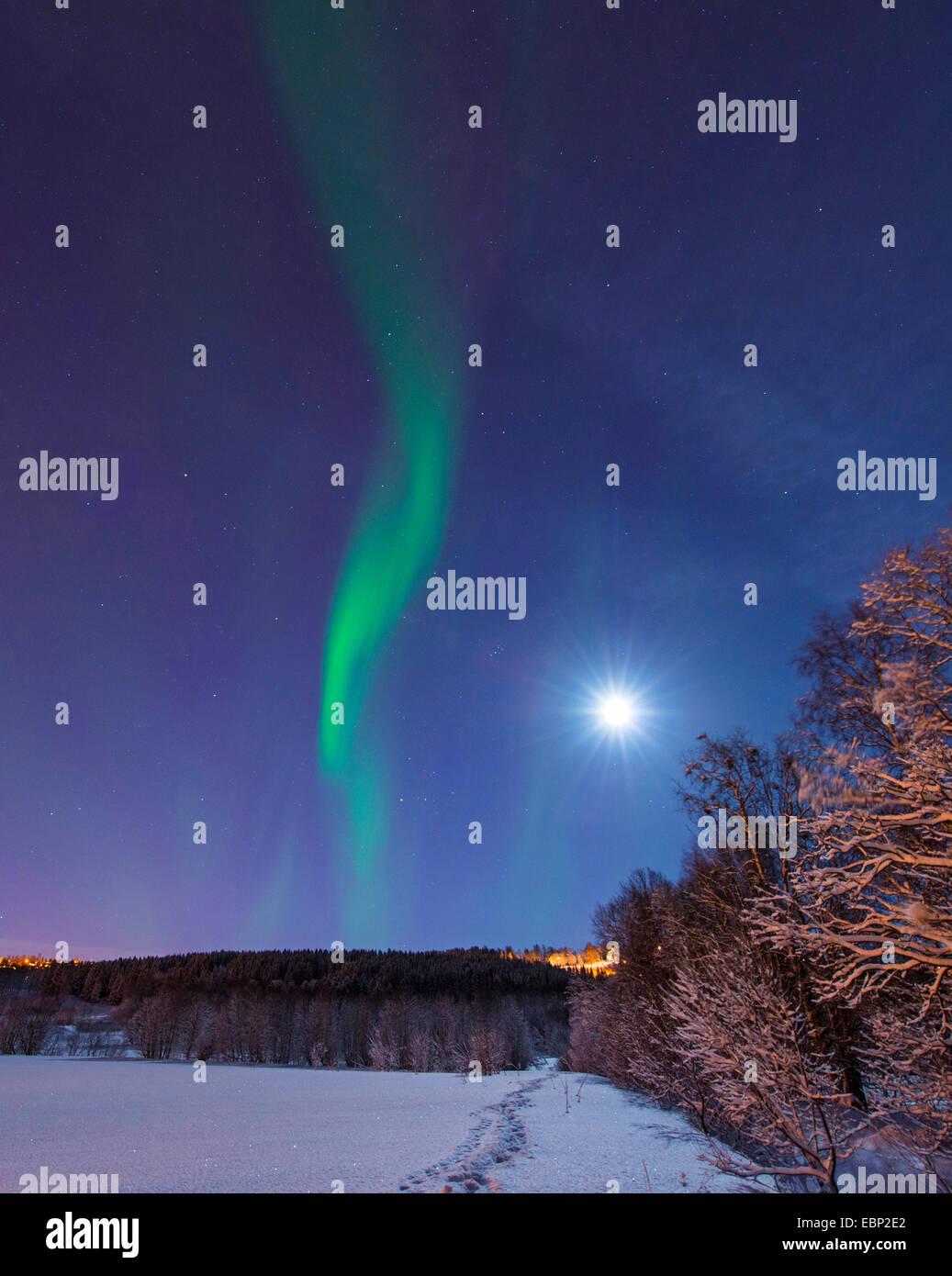 aurora and moon above winter scenery, Norway, Troms, Tromsoe - Stock Image
