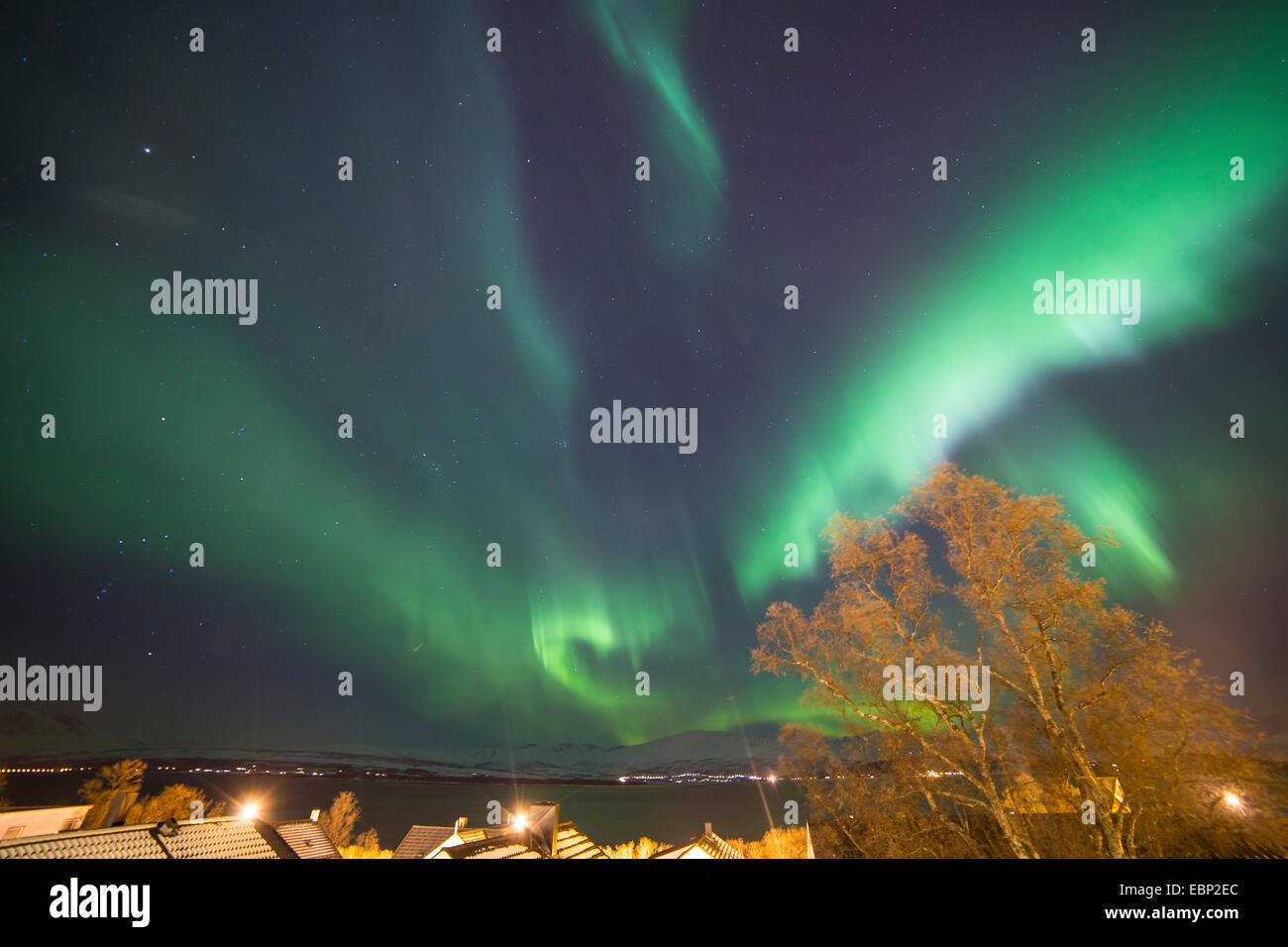 aurora with Orion and Jupiter, Norway, Troms, Tromsoe - Stock Image