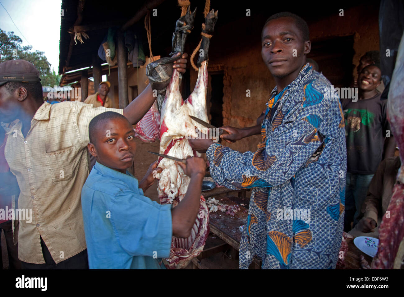 young butcher disemboweling a sheep at the roadside under unhygienic conditions, Burundi, Near National Parc de Stock Photo