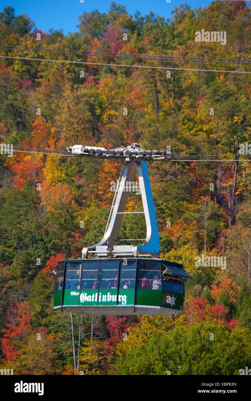 Tram car of Ober Gatlinburg Aerial Tramway in autumn. Stock Photo