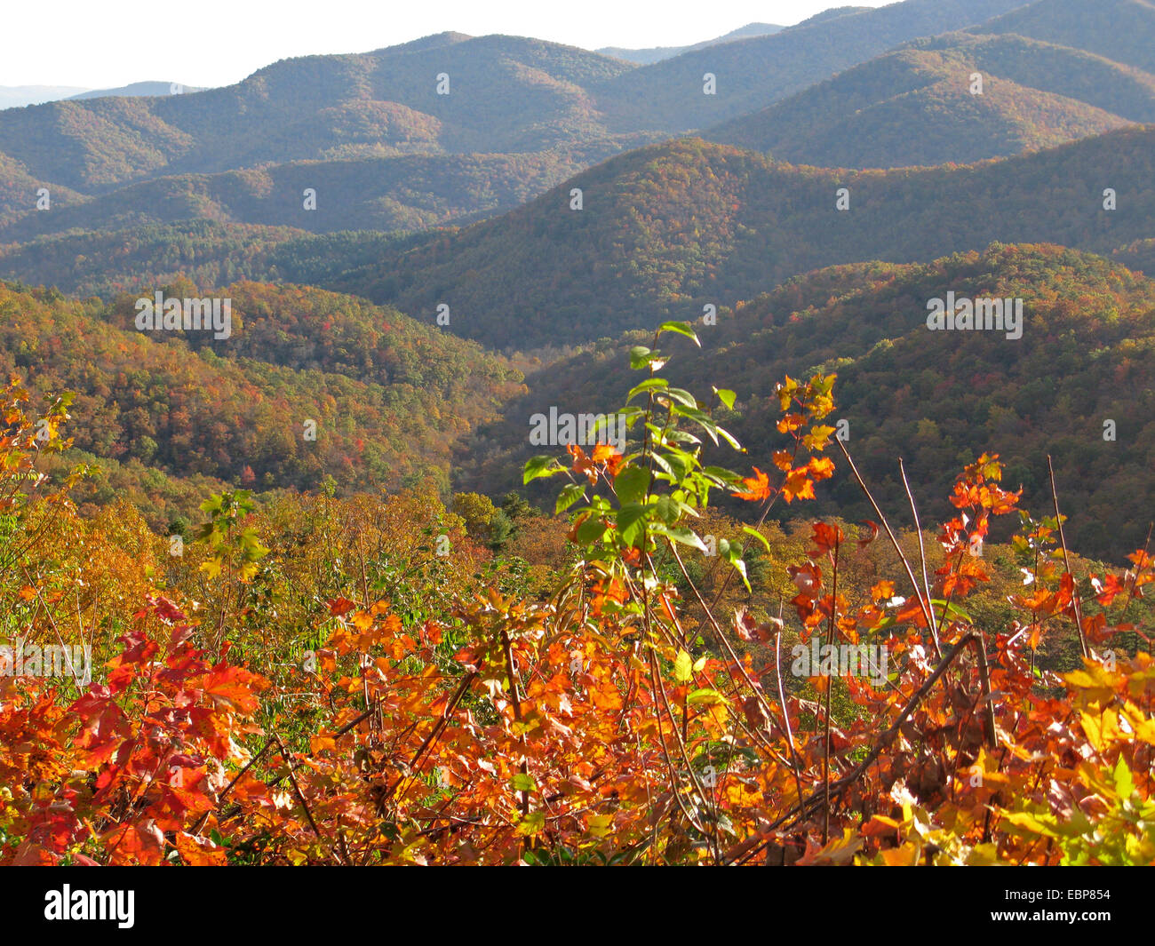 Great Smoky Mountains National Park in autumn. - Stock Image