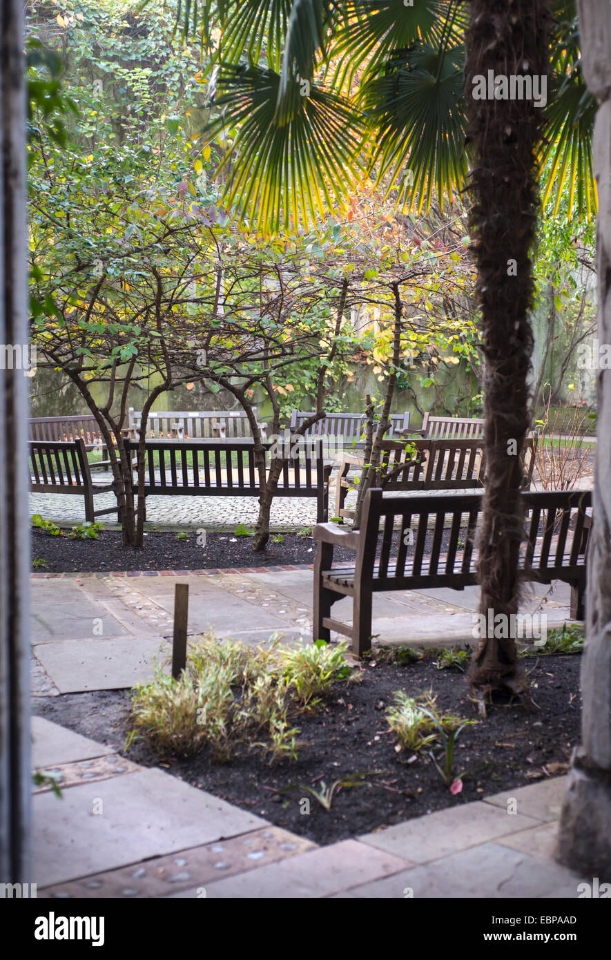 Hidden garden in the ruins of St Dunstan in the East medieval church in the City of London, England, UK - Stock Image