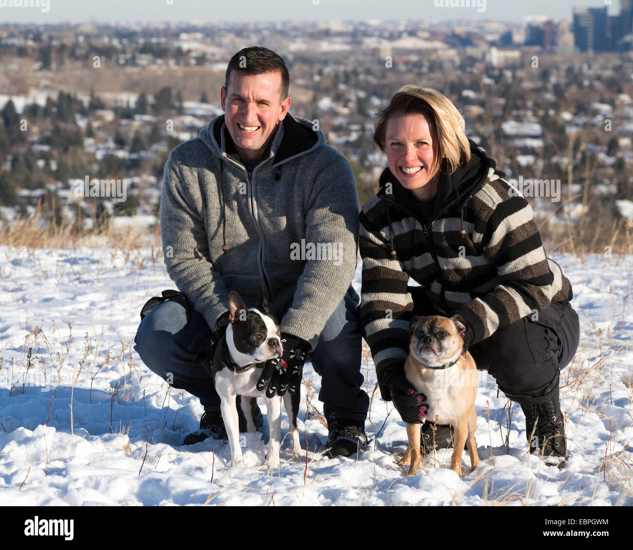 Couple with Boston Terrier and Bugg (cross between Boston Terrier and Pug) dogs in city park - Stock Image