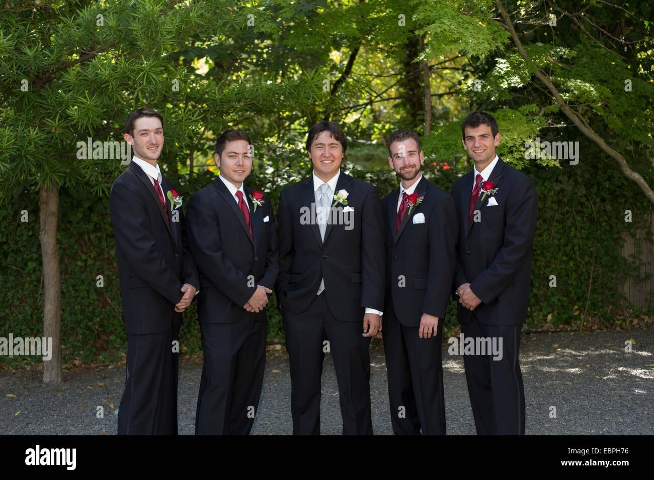 groom and groomsmen wedding attendants wedding party at wedding at the Marin Art and Garden Center in the city of - Stock Image