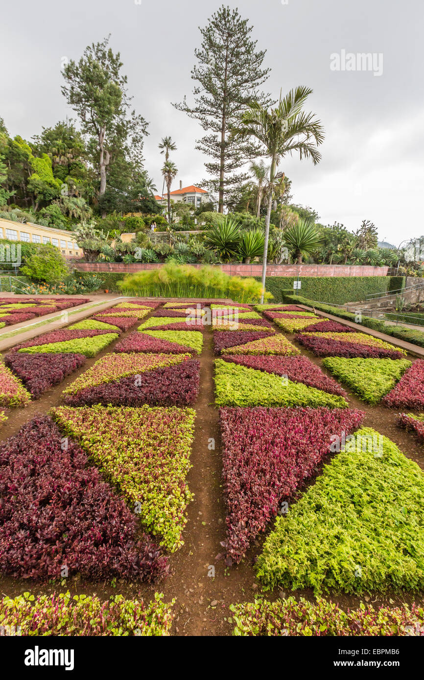 A view of the Botanical Gardens, Jardim Botanico do Funchal, in the city of Funchal, Madeira, Portugal, Europe - Stock Image