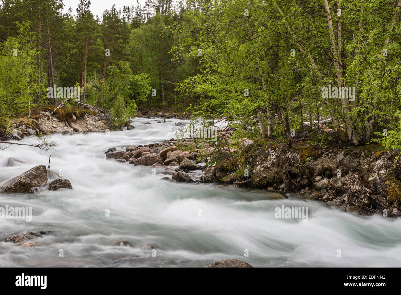 Slow motion blur detail of a raging river in Hellmebotyn, Tysfjord, Norway, Scandinavia, Europe - Stock Image