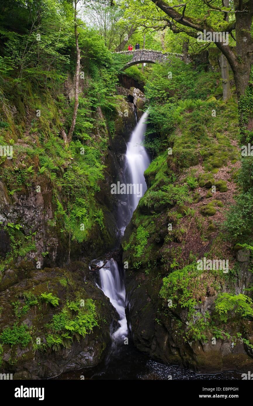 Aira Force, Ullswater, Lake District National Park, Cumbria, England, United Kingdom, Europe Stock Photo