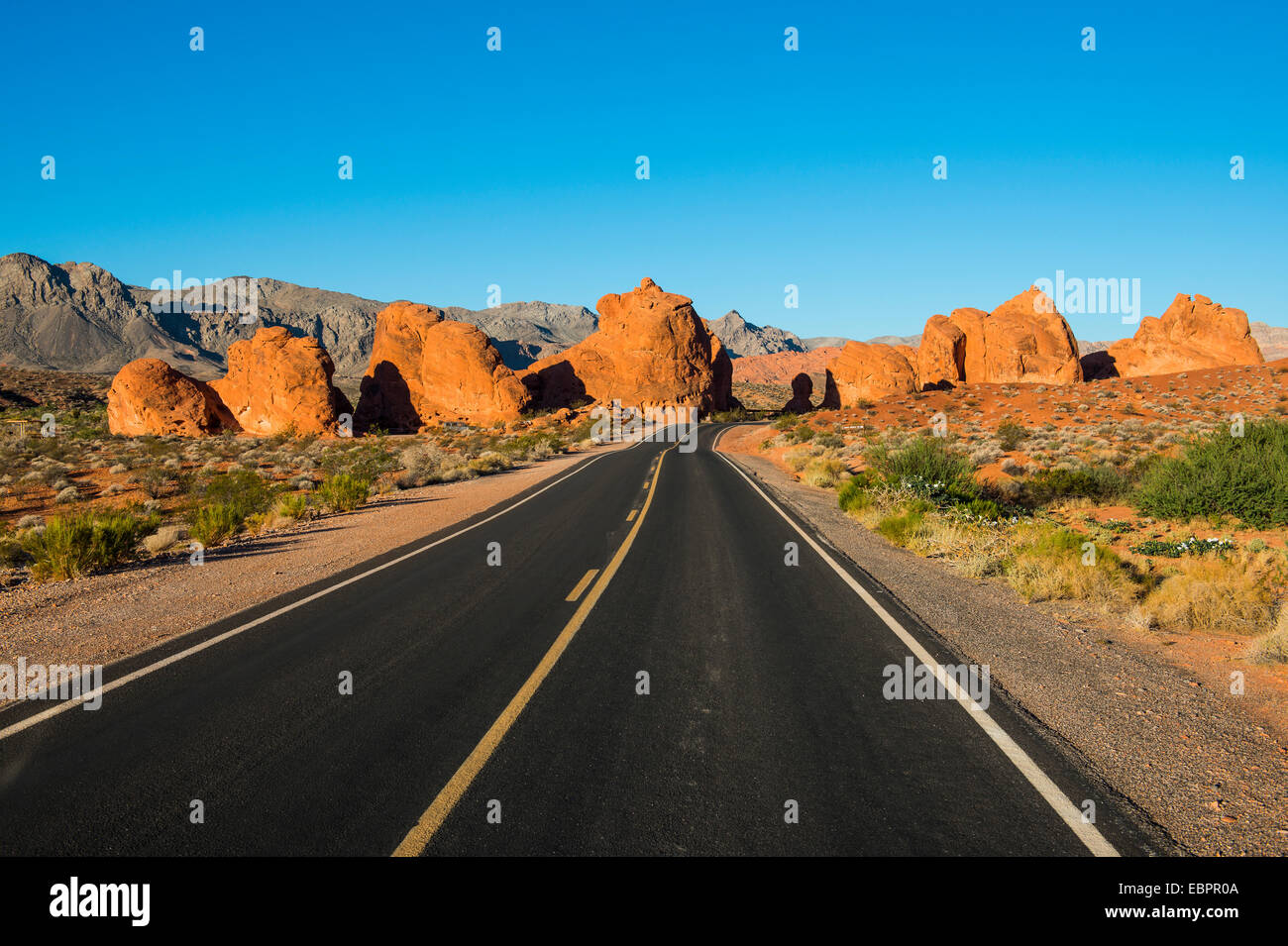 Road leading in the redrock sandstone formations of the Valley of Fire State Park, Nevada, United States of America - Stock Image