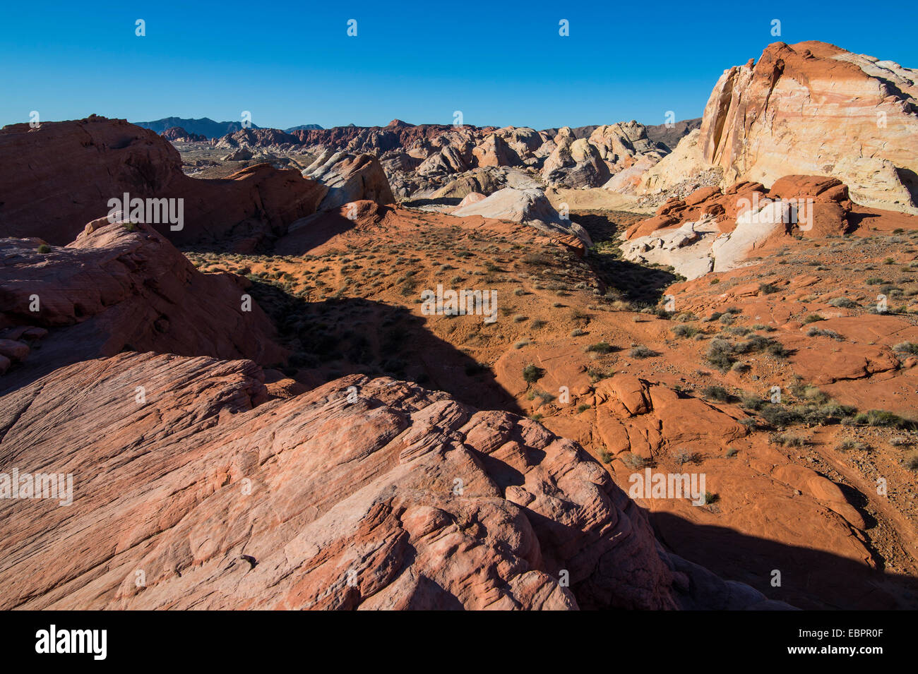 Redrock Sandstone formations at sunrise in the Valley of Fire State Park, Nevada, United States of America, North - Stock Image