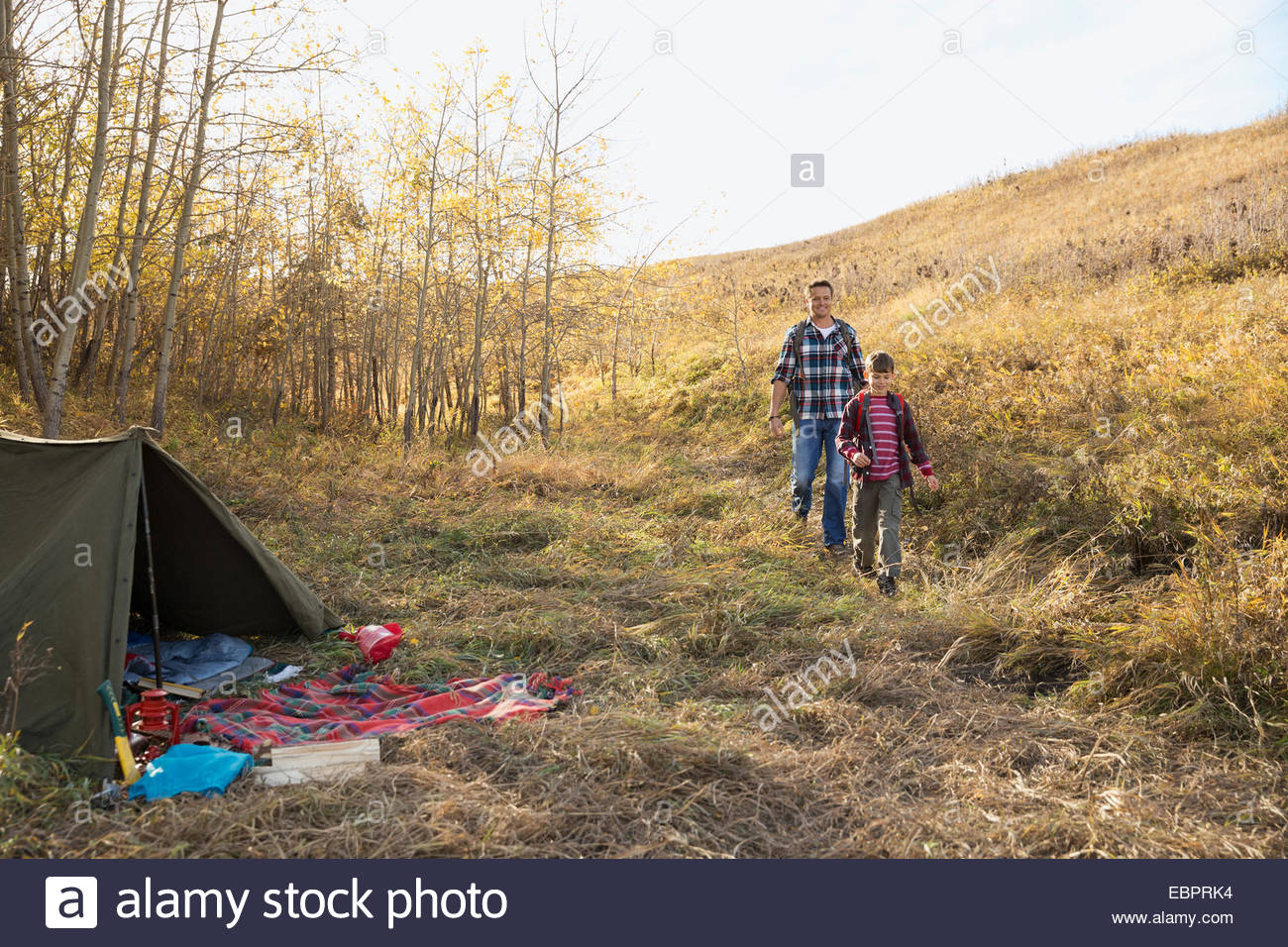 Father and son nearing tent at campsite - Stock Image