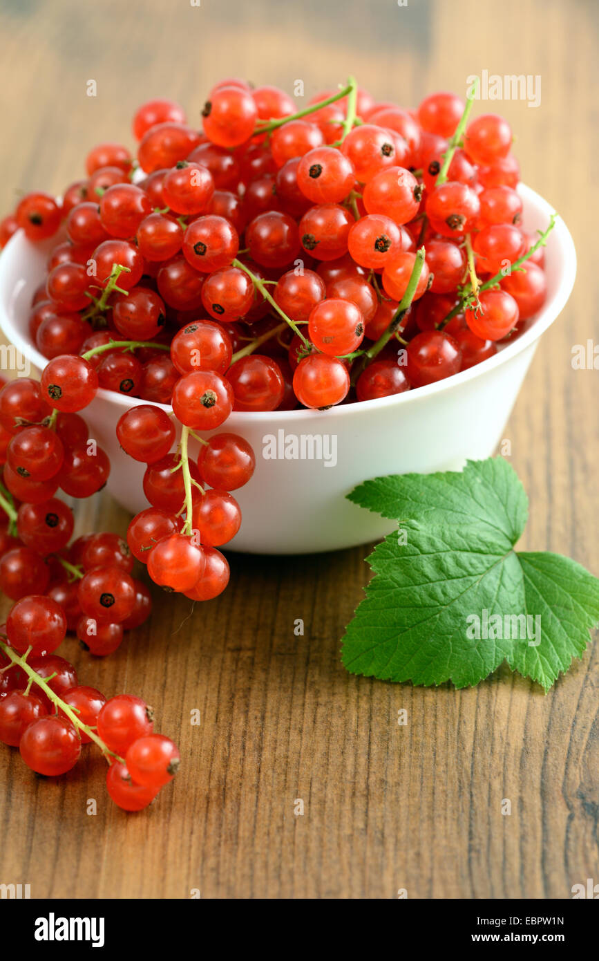 bowl with red currant on table - Stock Image