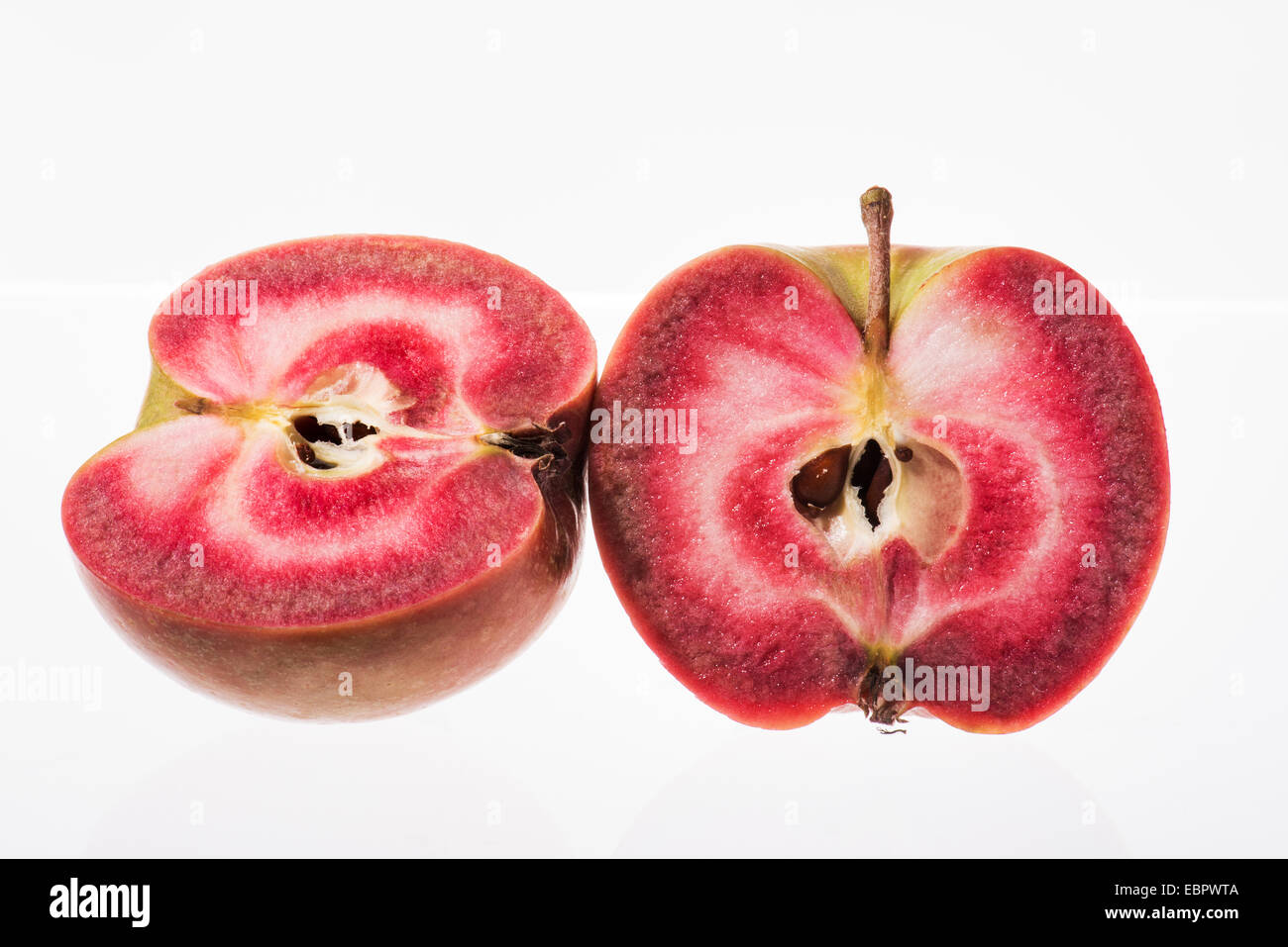 continuous red apple breeding new - Stock Image