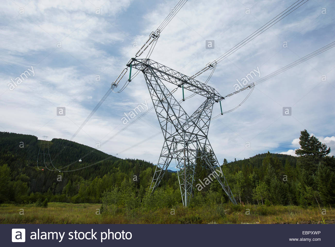 Power lines in rural field - Stock Image