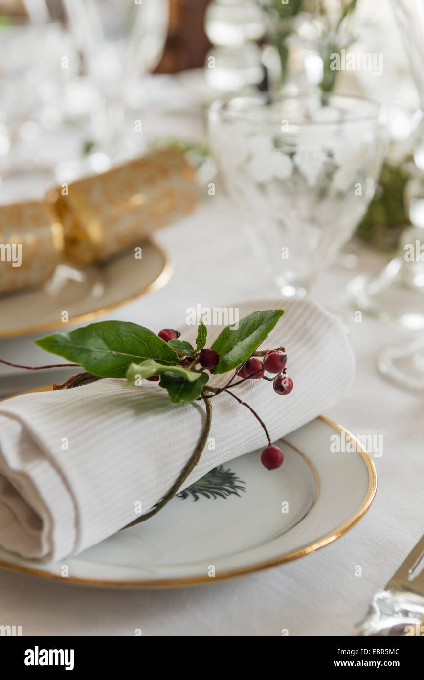 Sprig of holly used for napkin ring at table place for christmas dinner - Stock Image