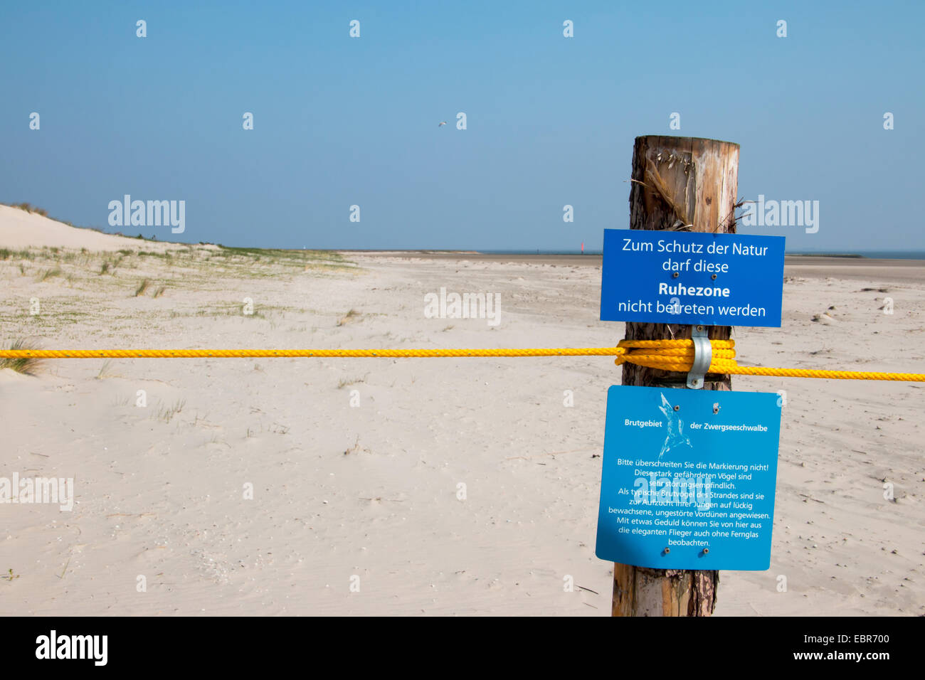 protected area in tidal sea nationalpark, Germany, Lower Saxony, Spiekeroog - Stock Image