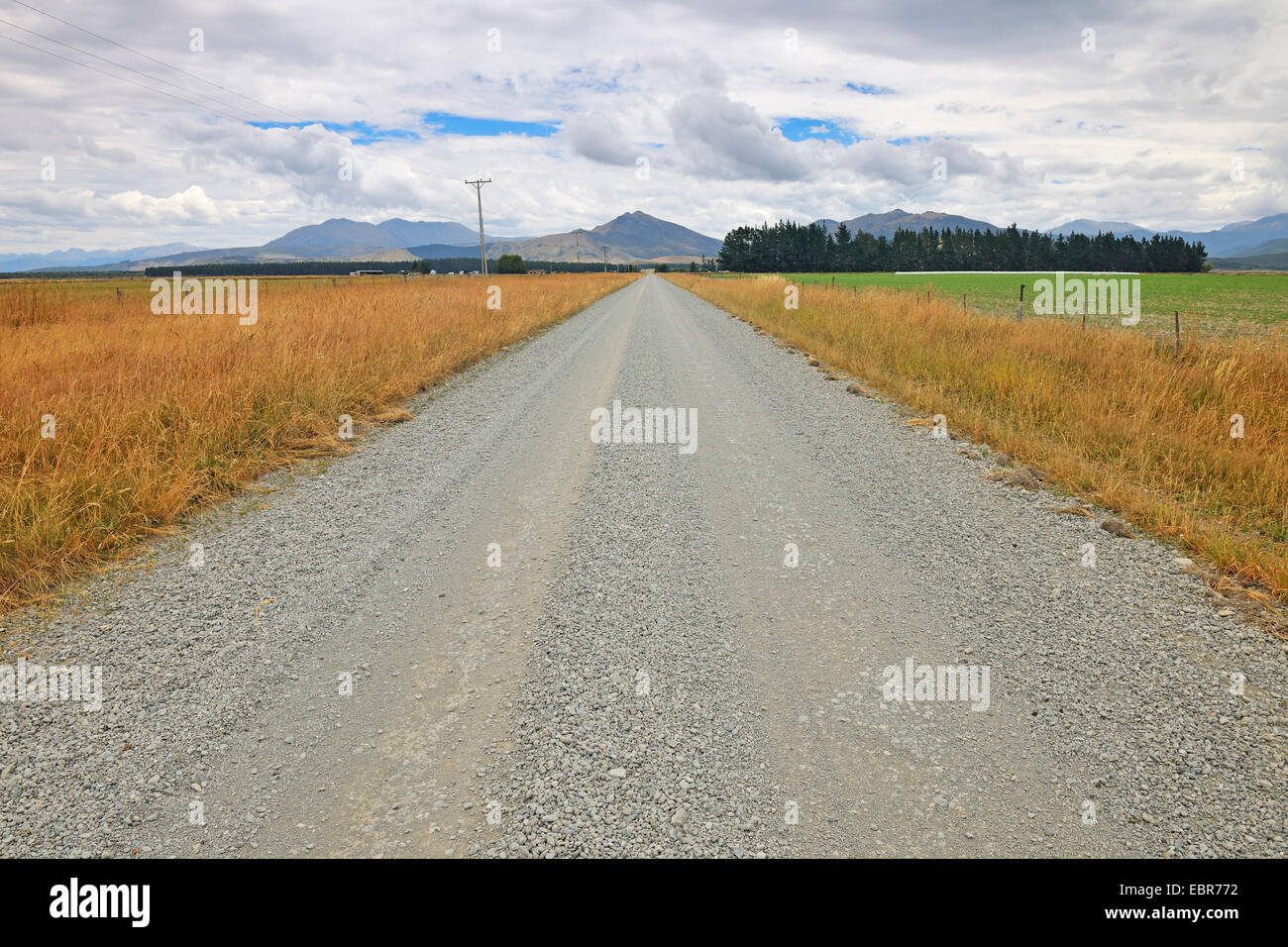 Gravel Road at Southland New Zealand, New Zealand, Southern Island, Southland, Lowther - Stock Image
