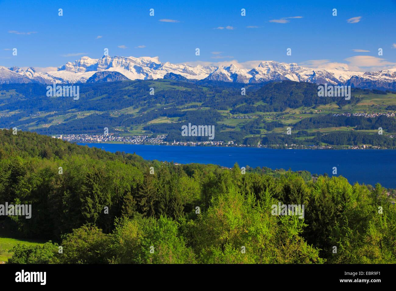 Lake Zurich and Glaernisch, view from the Pfannenstiel, Switzerland, Zuercher Oberland Stock Photo