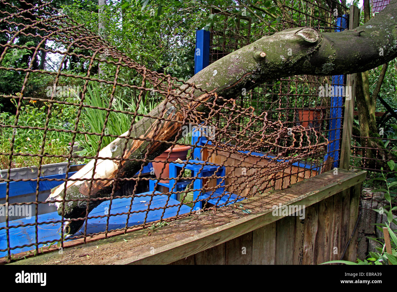 fallen branch of a tree had demolished an iron fence, storm front Ela at 2014-06-09, Germany, North Rhine-Westphalia, - Stock Image