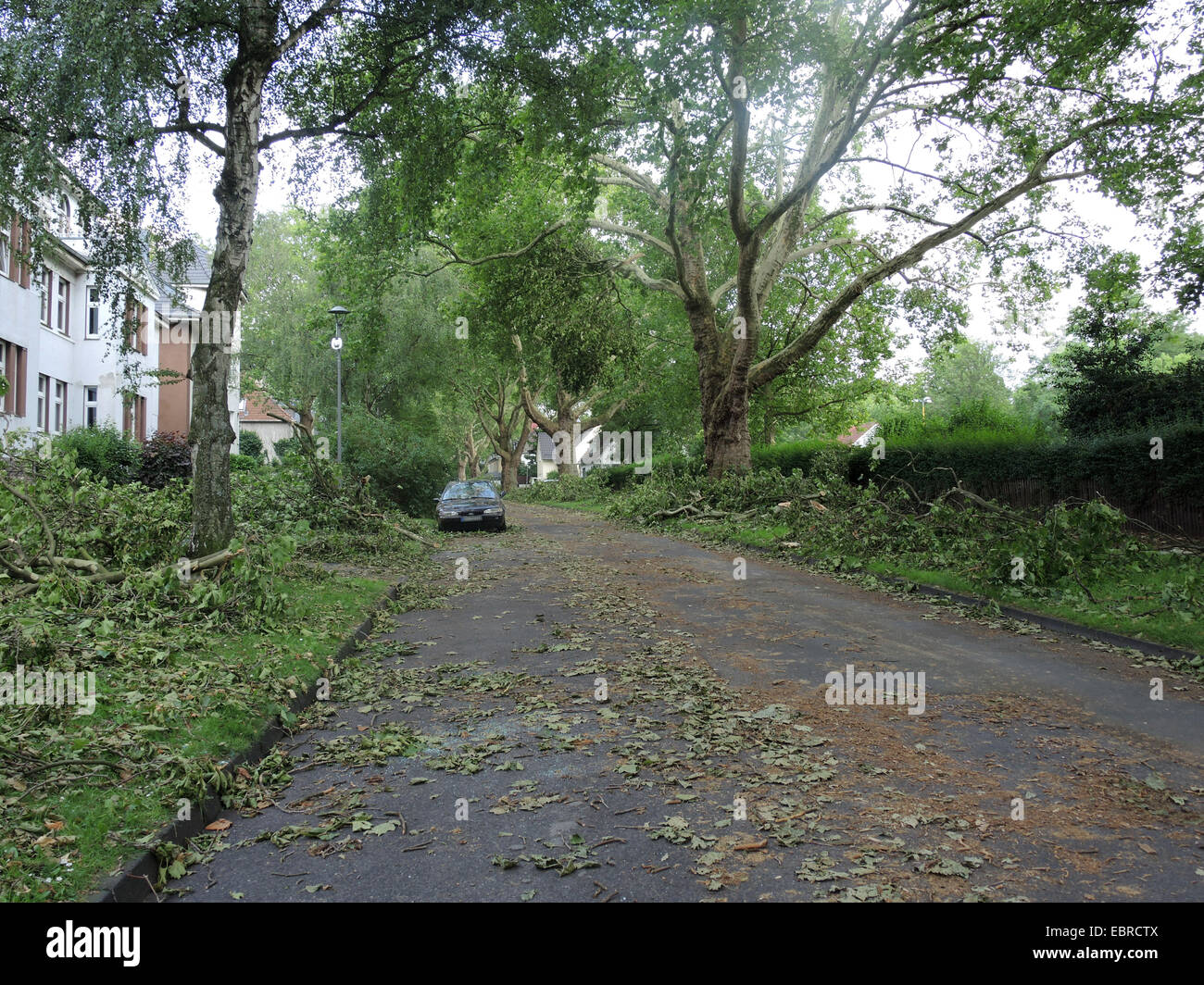 street with car after storm front Ela at 2014-06-09, Germany, North Rhine-Westphalia, Ruhr Area, Bochum - Stock Image