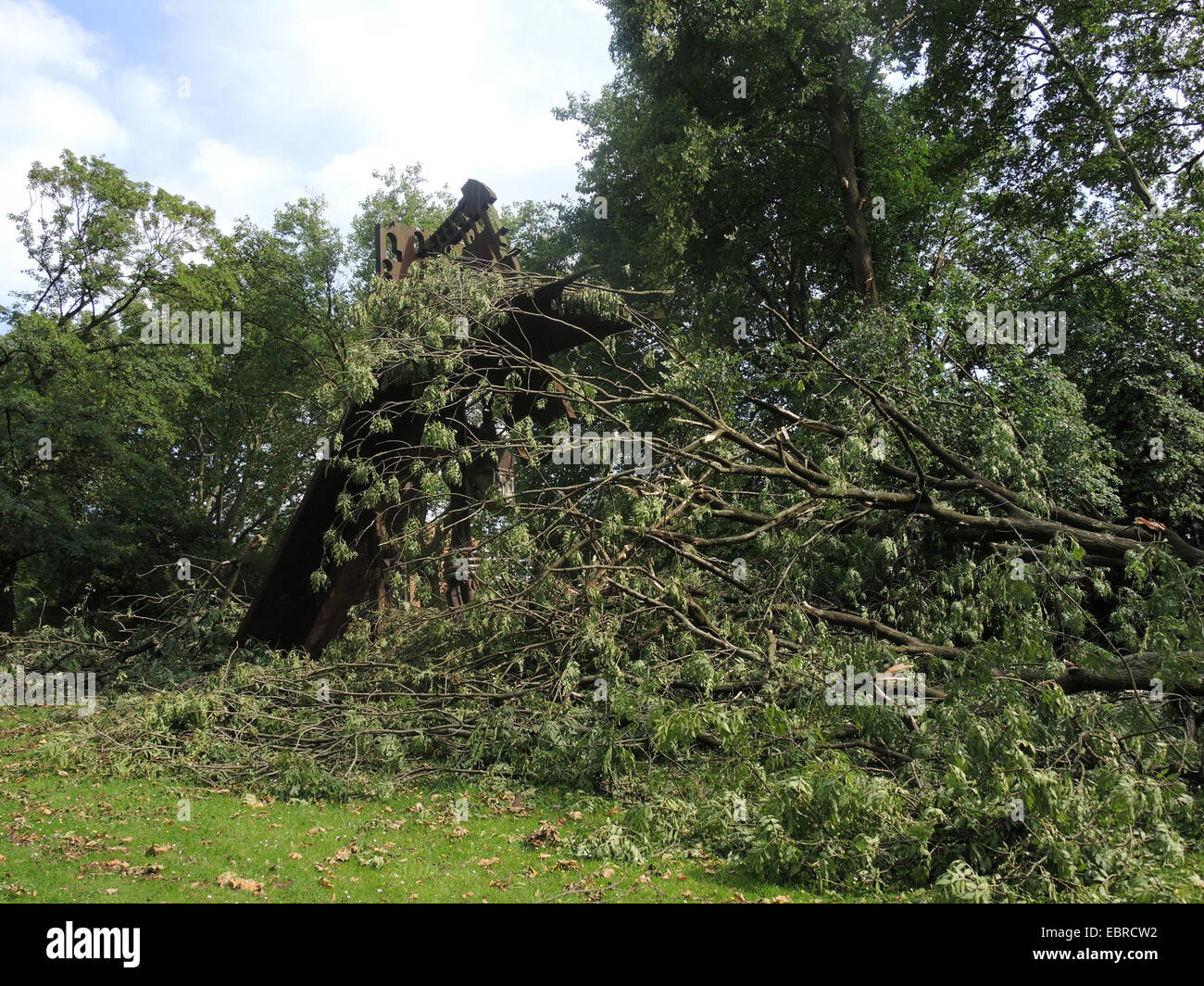 ravaged city park of Bochum by fallen trees and broken branches, storm front Ela at 2014-06-09, Germany, North Rhine - Stock Image