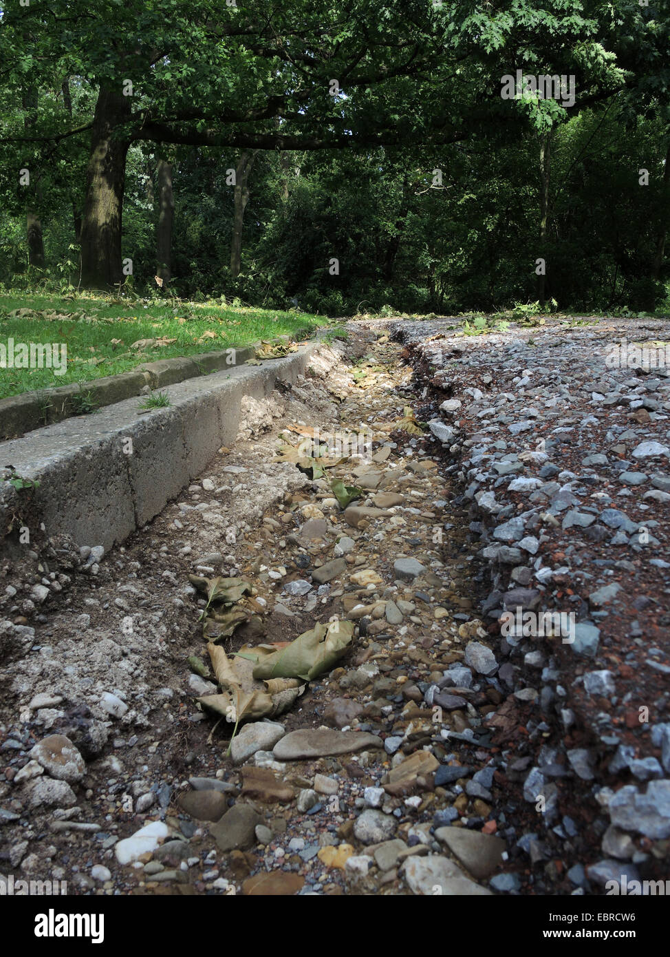 erosion gully on a path in the ravaged city park of Bochum by fallen trees, storm front Ela at 2014-06-09, Germany, - Stock Image