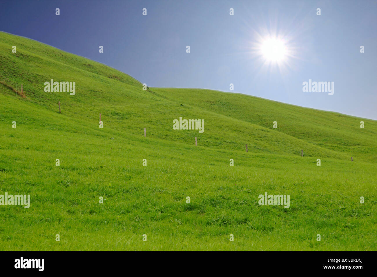 hilly landscape with meadows in backlight, Germany - Stock Image