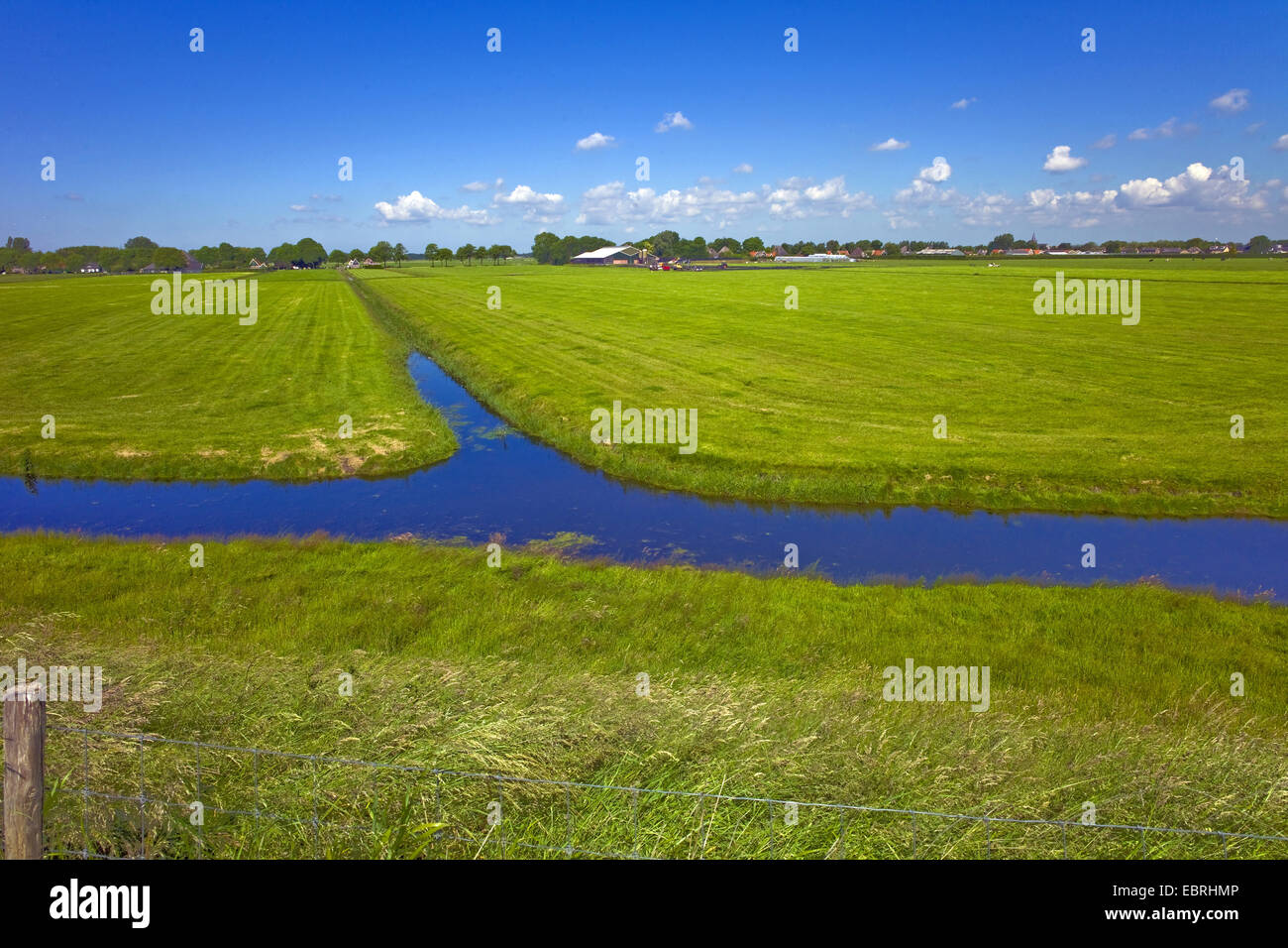 pastures and ditches, Netherlands, Noord Holland, Enkhuizen - Stock Image