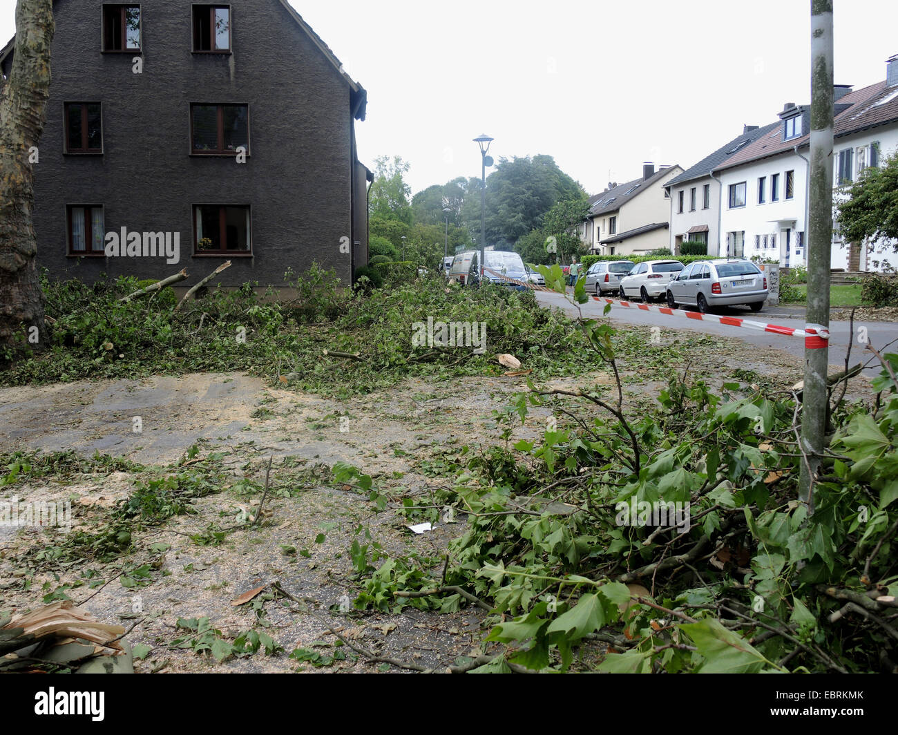 blocked street after the storm front Ela at 2014-06-09, Germany, North Rhine-Westphalia, Ruhr Area, Bochum - Stock Image
