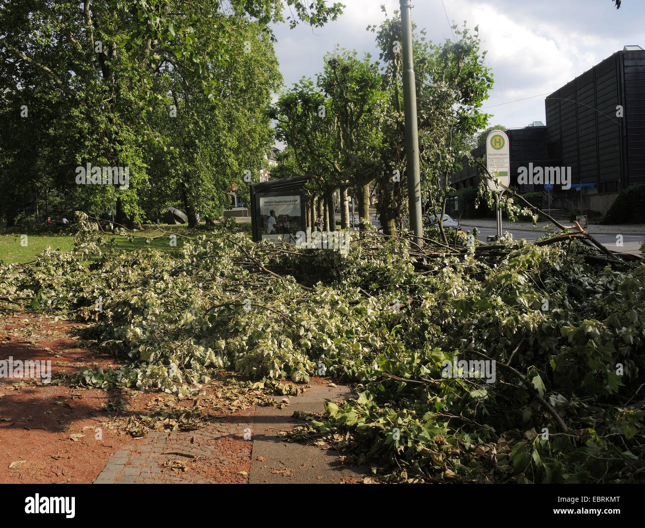 street with busstop after the storm front Ela at 2014-06-09, Germany, North Rhine-Westphalia, Ruhr Area, Bochum - Stock Image