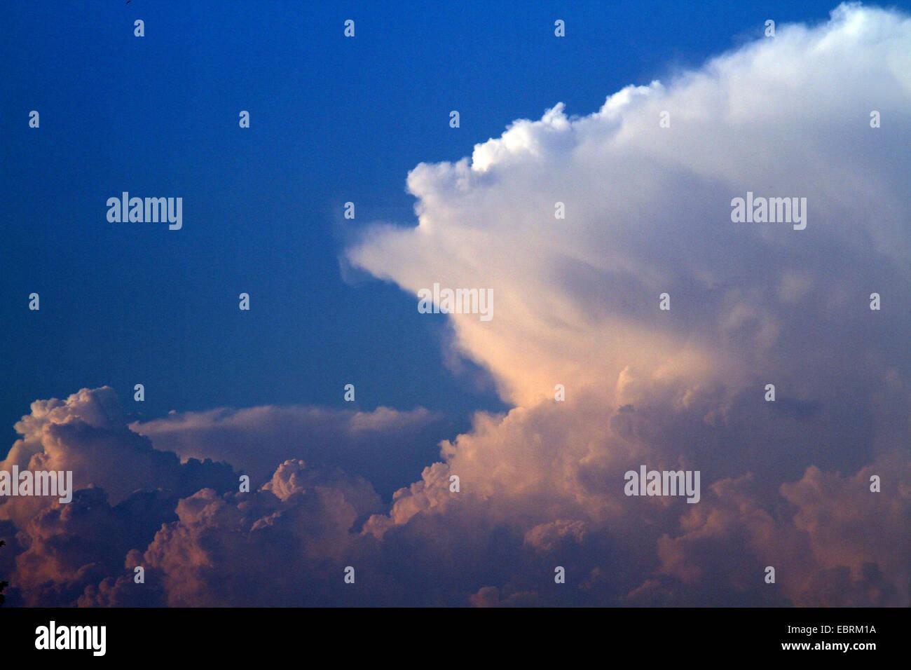 cumulonimbus clouds with incus, Germany - Stock Image