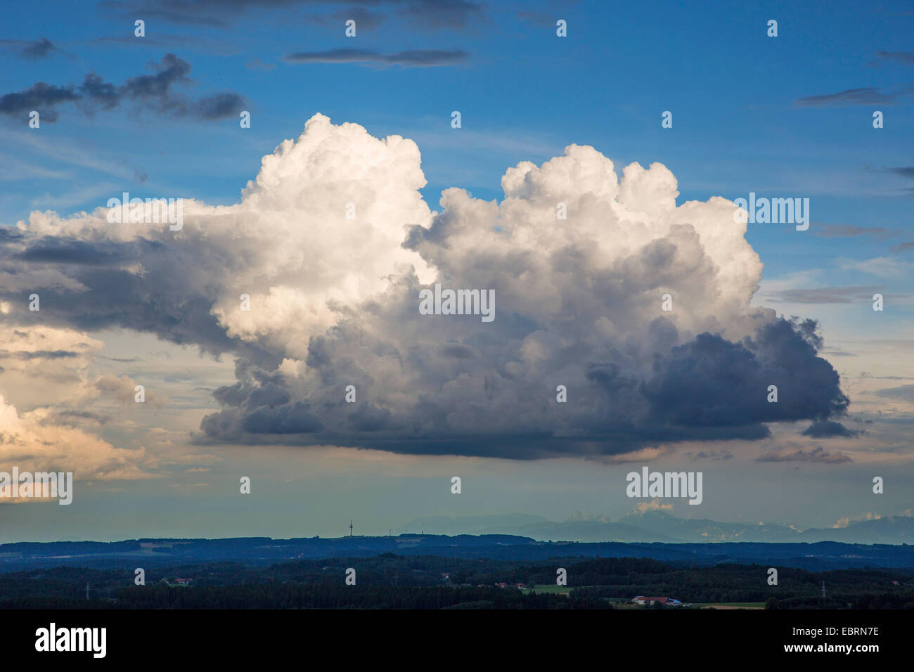 Cumulus congestus , Germany, Bavaria, Isental - Stock Image