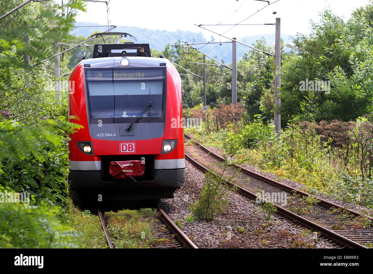 city railway on overgrown railtracks, Germany - Stock Image
