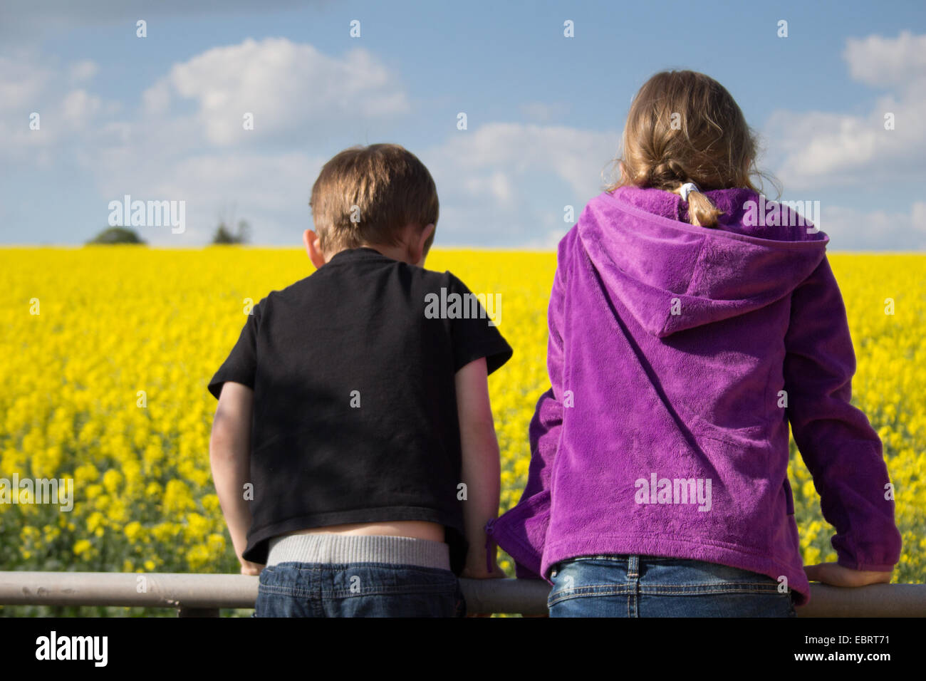 A boy and girl lean over a farm gate, looking across a rapeseed oil field. - Stock Image