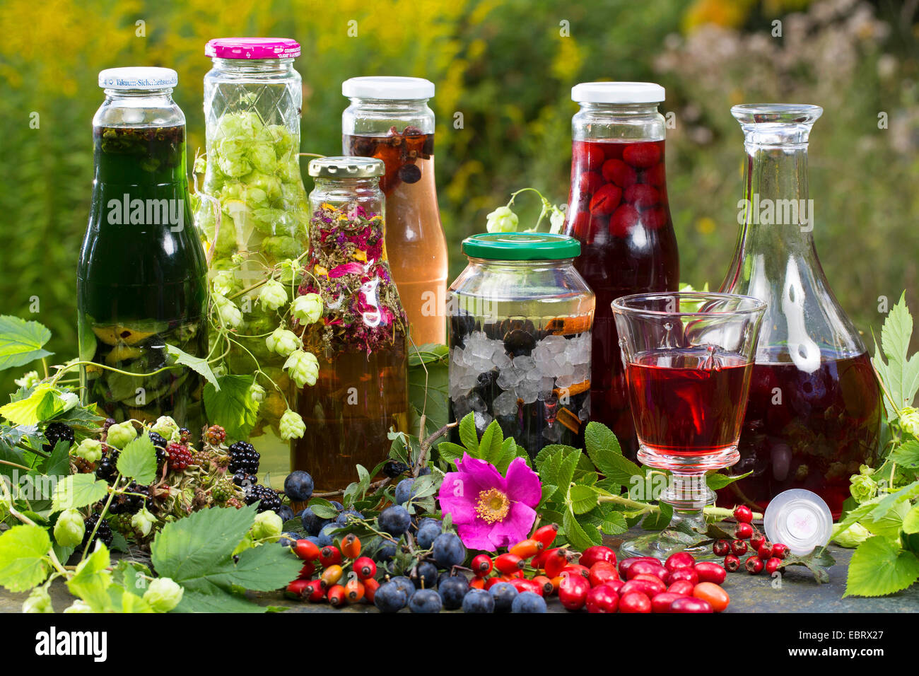 different selfmeade schnappses from wild fruits - Stock Image