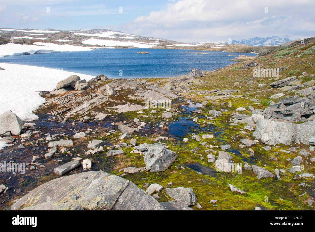 landscape at the Jotunheimen National Park, Norway, Jotunheimen National Park - Stock Image