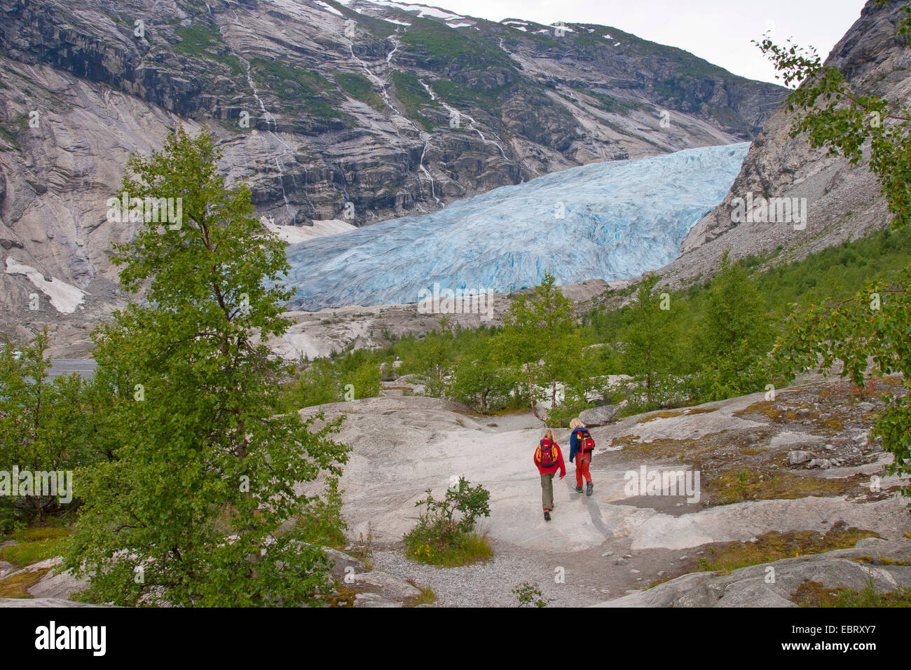 two children wandering to Nigardsbreen glacier arm, Norway, Jostedalsbreen National Park - Stock Image
