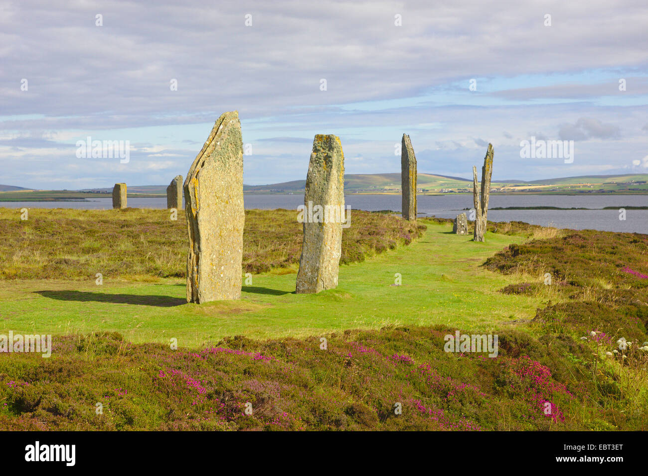 Ring of Brodgar neolithic henge , United Kingdom, Scotland, Orkney, Orkney Mainland - Stock Image