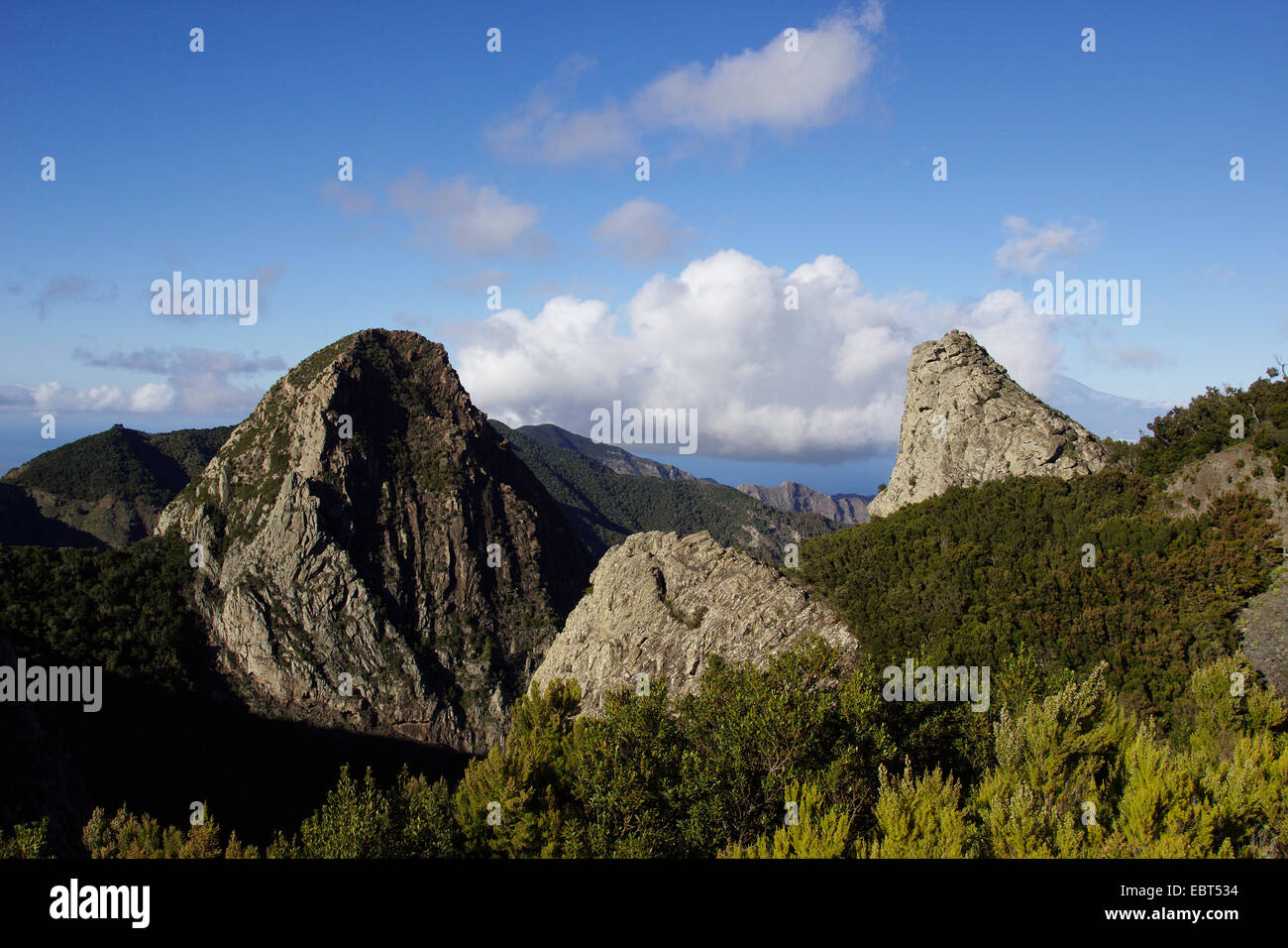 Roque de Ojila, phonolite intrusion, Canary Islands, Gomera - Stock Image