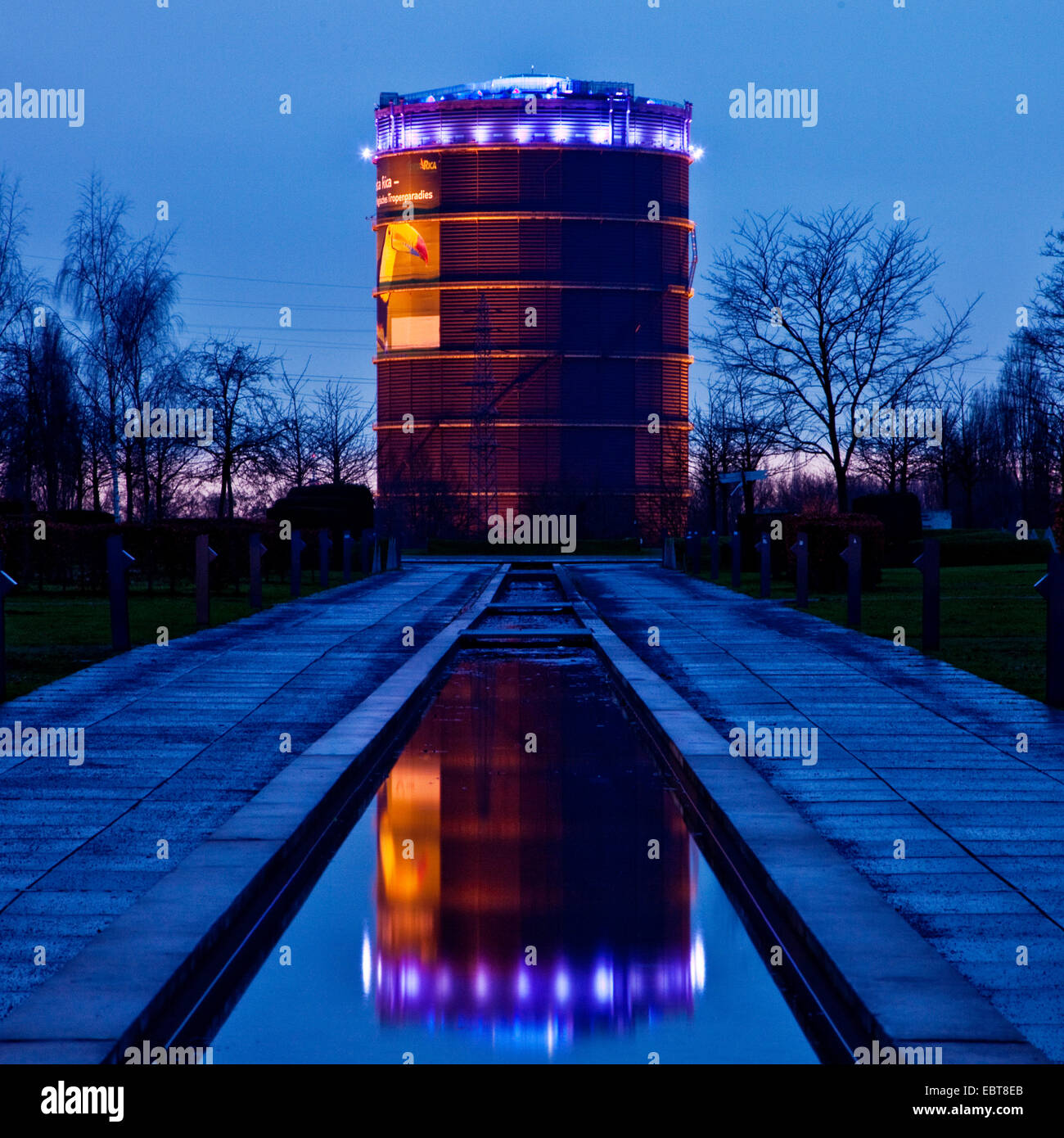 illuminated gasometer, view from Olga park, Germany, North Rhine-Westphalia, Ruhr Area, Oberhausen Stock Photo
