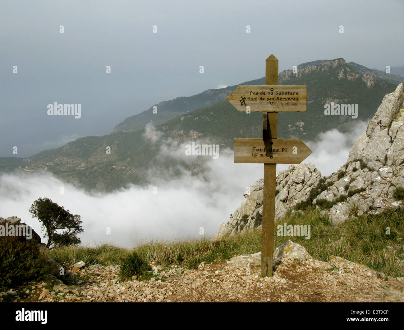 wooden signposts at trecking path on Puig de Galatzo , Spain, Balearen, Majorca - Stock Image