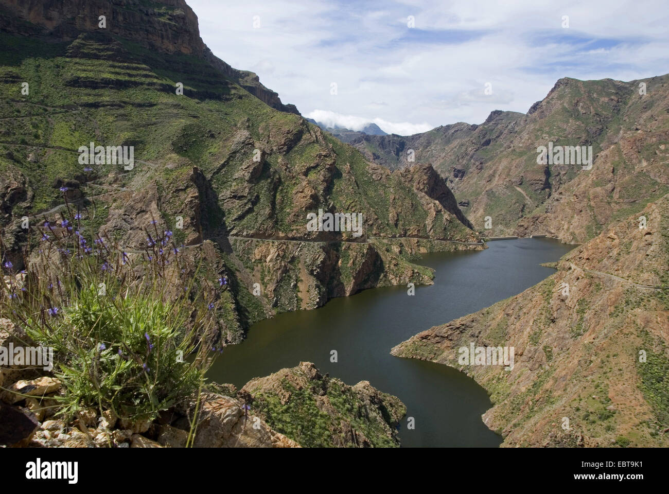 view from a mountain slope at the storage lake 'Presa del Parralillo', Canary Islands, Gran Canaria Stock Photo
