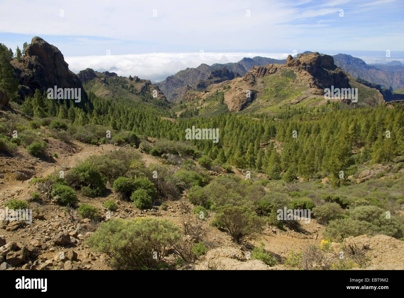 view from the rock tower 'Roque Nublo' (cloud rock), landmark of the island, to the South, Canary Islands, Gran Stock Photo
