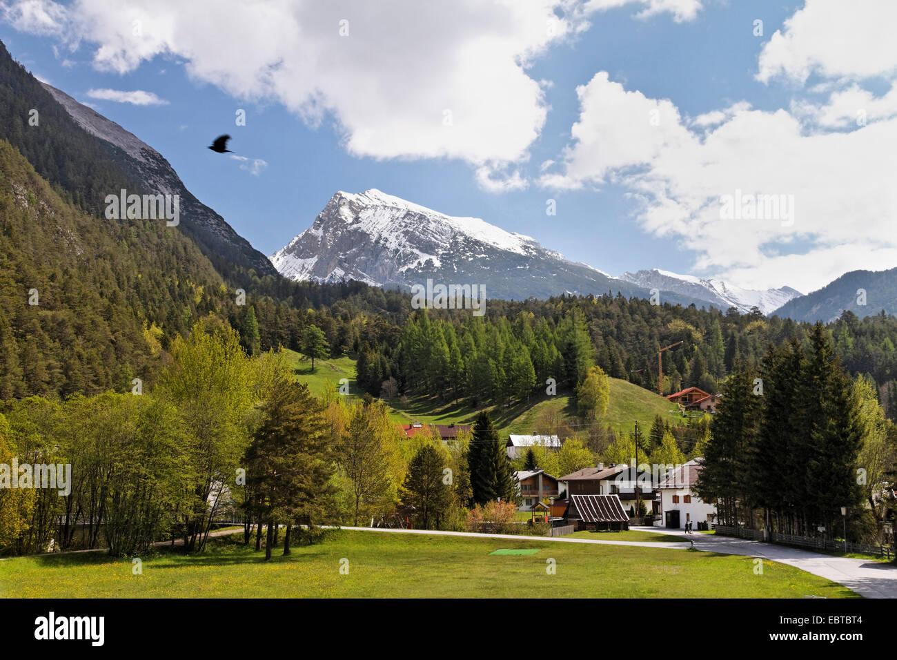 view to Pleisenspitze, Austria, Karwendel Mountains, Scharnitz - Stock Image