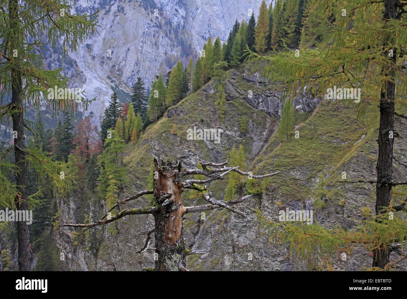 view into the Rissbach Valley, Austria, Karwendel Mountains, Engadine Stock Photo